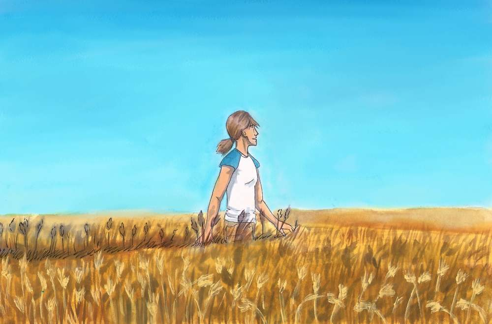 The blue sky and the golden wheat